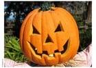 Foto abóbora de Halloween