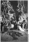Foto Ano Novo 1953