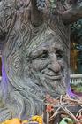 Foto árvore de contos de fadas