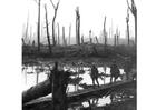 Foto campo de batalha na primeira guerra mundial