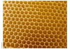 Foto colméia e favo de abelhas