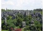 Foto floresta petrificada em Kumming
