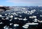 Foto geleiras e icebergs