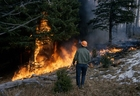 Foto incêndio florestal
