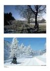 Foto inverno 1