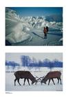 Foto inverno 3