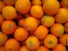 Foto laranjas