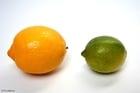 Foto lima e limão