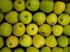 Foto maçãs