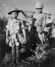 Foto nenhuma criança na guerra