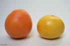 Foto pomelos