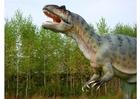 Foto réplica de allosaurus
