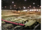 Foto sítio arqueológico Xian