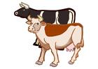 imagem 2 vacas