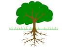 imagem árvore com as raízes
