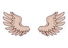imagem asas