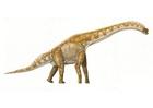 imagem brachiosaurus