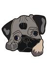 imagem cachorro - pug