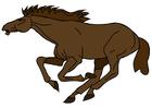 imagem cavalo
