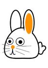 imagem coelho - curvado