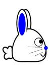 imagem coelho - lateral
