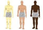 imagem cores de pele