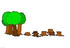 imagem desmatamento