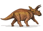 imagem dinossauro anchiceratops