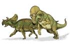 imagem dinossauro avaceratops