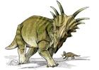 imagem dinossauro estiracossauro