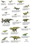 imagem dinossauros (basal ceratopsia)