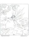 Página para colorir fada