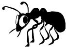 Página para colorir formiga