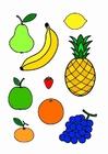 imagem frutas