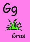 imagem g