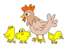 imagem galinha com pintinhos