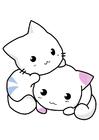 imagem gatinhos
