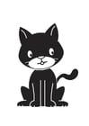 imagem gato preto