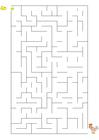 imagem labirinto galinha