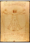 imagem Leonardo da Vinci - Homem Vitruviano