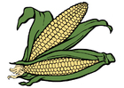 imagem milho