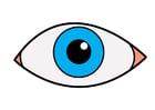 imagem olho