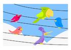 imagem pássaros
