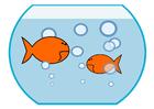 imagem peixinho dourado