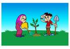 imagem plantar uma árvore