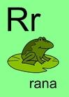 imagem r