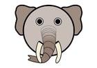 imagem r1 - elefante