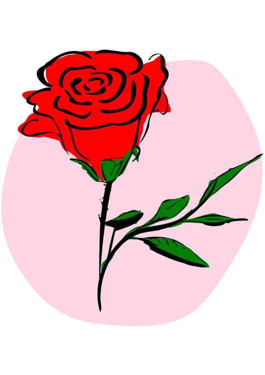 Imagem Rosa Vermelha Imagens Gratis Para Imprimir