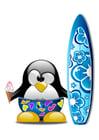 imagem surf