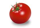imagem tomate
